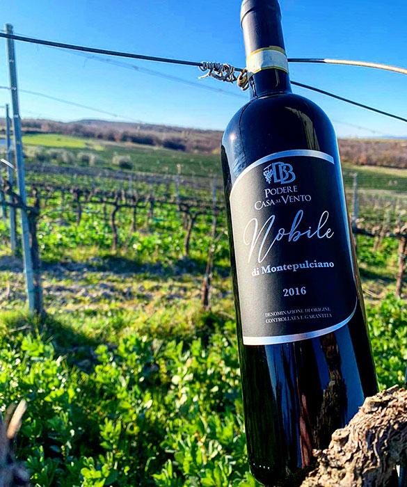 bottiglia vino nobile in vigna